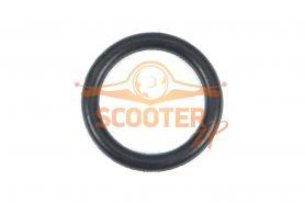 Кольцо уплотнительное для мотопомпы CHAMPION GP80, 100 пробки сливной/заливной