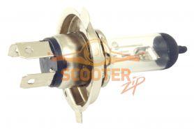 Лампа фары галоген H4 P43T 12V 35/35W прозрачная